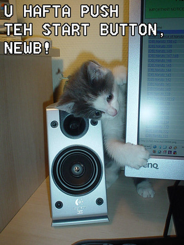 Start button kitten