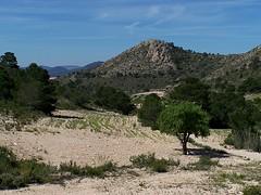 Sax landscape