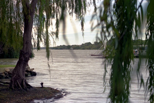 Murray River near Murraybridge, South Australia 1987