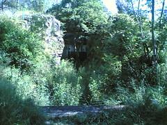 pihlajasaari