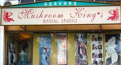 Mushroom King's Bridal Studio shop sign