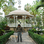 Arial and Breta, his golden lab, Colimas Gazebo Mexico
