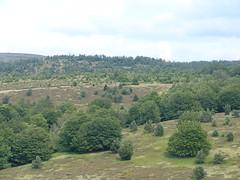 The path across the Cham de Cham Longe - Photo of Laveyrune