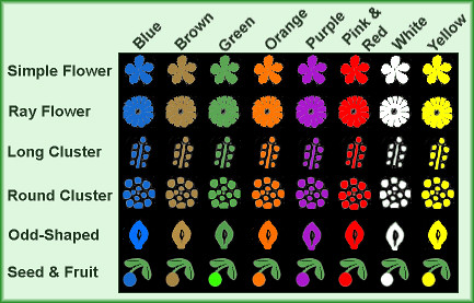 flower type map
