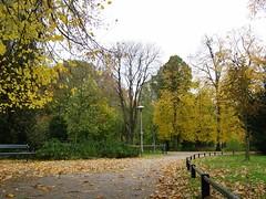 2558: Wilhelminapark