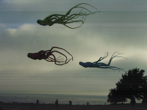 Flying Octopi