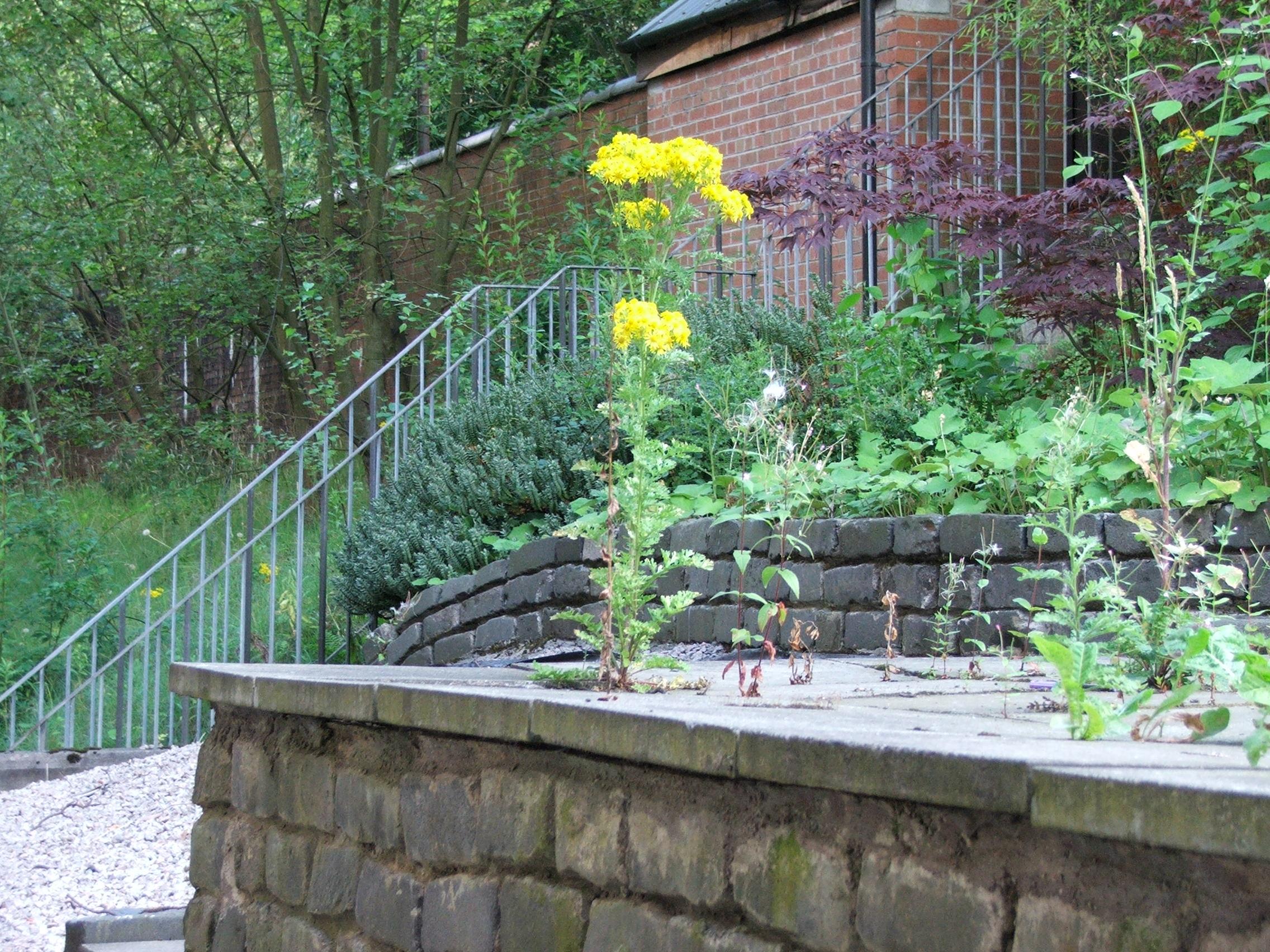 Lilybank Secret Garden