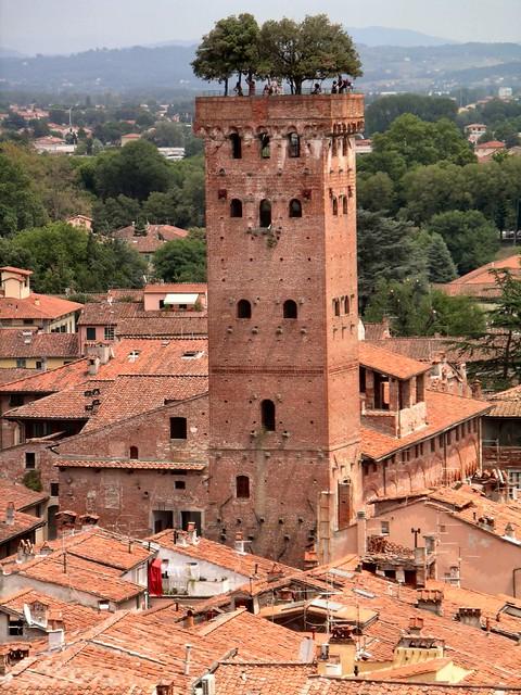 Lucca Uitzicht opTorre dei Guinigi met Eiken