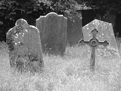 Golden Graves