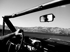 black and white and top down