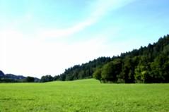 Günterstal landscape (photoshopped)