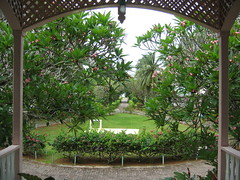 courtyard, botanical garden, backyard, outdoor structure, flower, garden, pergola, yard, flora, estate, gazebo,