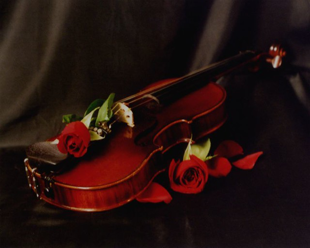 stradivarius wallpaper - photo #30