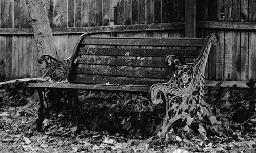 © Flickr: Haydnseek - bench