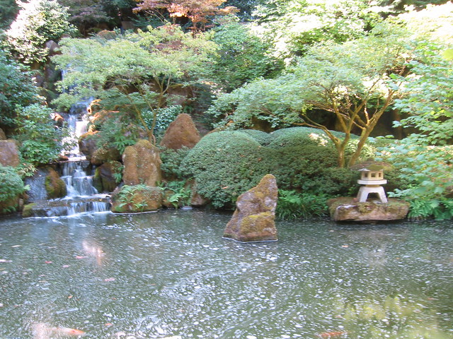 Across The Large Koi Pond Flickr Photo Sharing