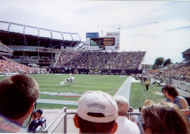 Broncos vs. Pats: white horse at mile high stadium | Flickr - Photo ...