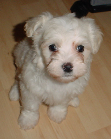 Such a cutie!
