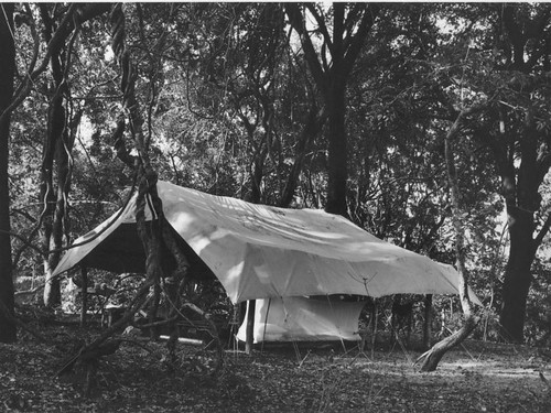 Camp, Zambesi Valley