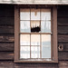 Small photo of window