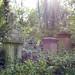 Small photo of Abney Park Cemetery, Stoke Newington