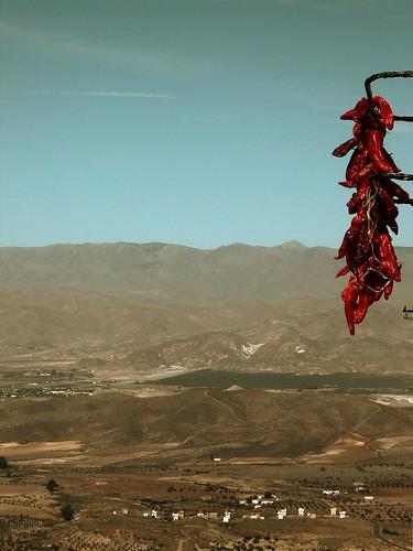 Colgado en Almería 01