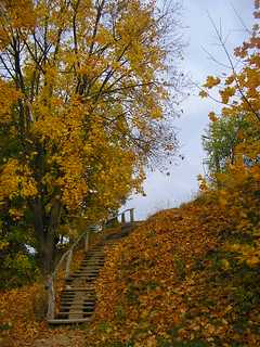 Stairs of the fall