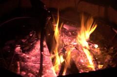 Backyard Fire