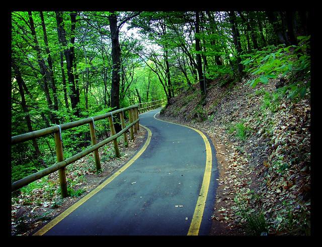 Road | Strada