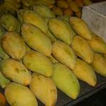 Mangoes - Ranong, Thailand