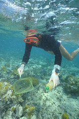 diving(0.0), coral reef(1.0), swimming(1.0), sports(1.0), sea(1.0), recreation(1.0), outdoor recreation(1.0), marine biology(1.0), water sport(1.0), underwater(1.0), freediving(1.0),
