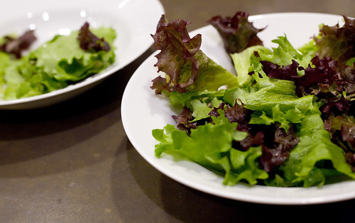 Salad greens two ways by liza31337