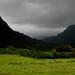 Kualoa Ranch by (jennY)