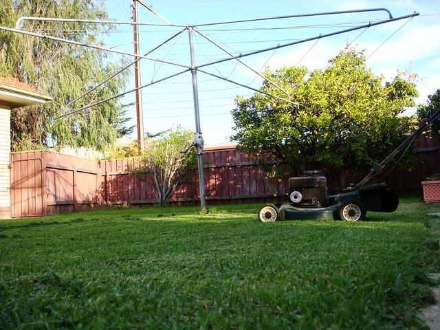 the backyard definition meaning