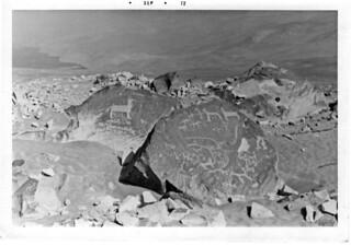 Toro Muerto Petroglyphs, Peru (1972)