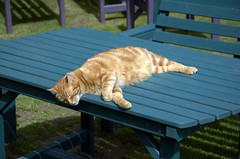 Relaxing, Relax