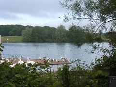 Cosmeston Lake