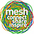 the mesh 07 - Canada's Web Conference group icon