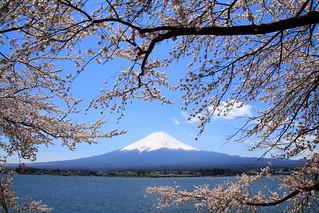 Mt. Fuji. - 無料写真検索fotoq