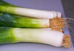 plant(0.0), vegetable(1.0), welsh onion(1.0), produce(1.0), food(1.0), scallion(1.0), leek(1.0),