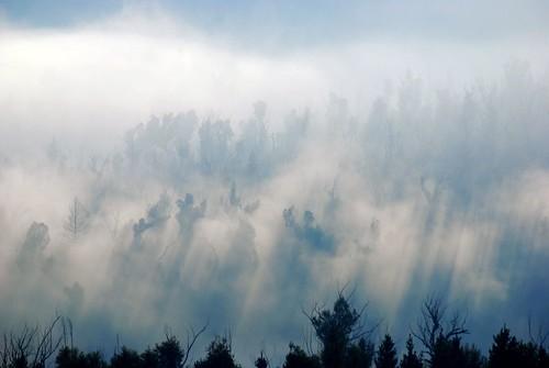 fog sunrise landscape geotagged australia canberra brindabellaranges geo:lat=35348106 geo:lon=148946564