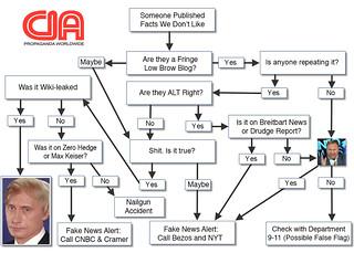 FAKE NEWS FLOW CHART