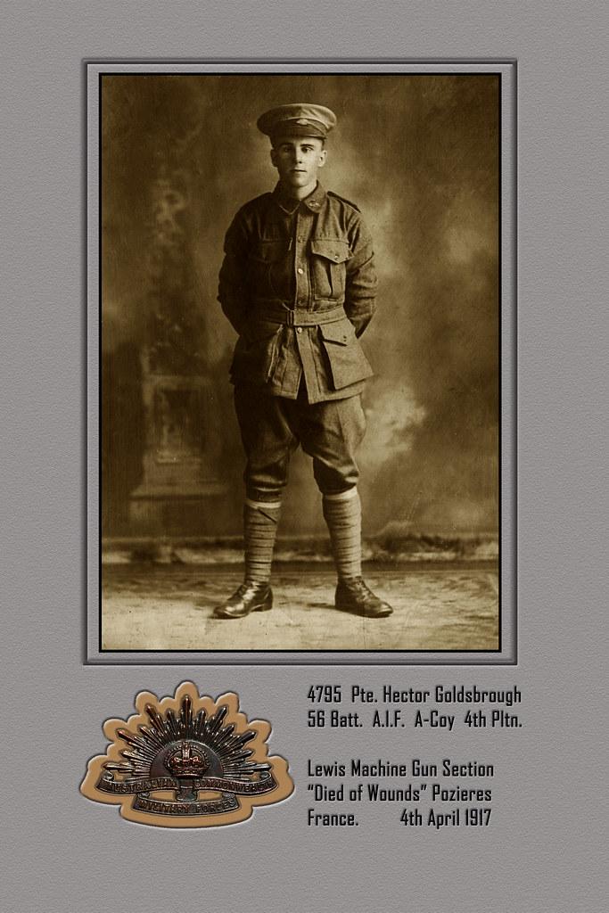 4795 Hector Goldsbrough - Portrait WW1:  Lewis Machine Gunner  KIA