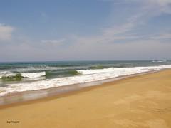 Beach - Natural Best  90,000 +  views, 75 comments