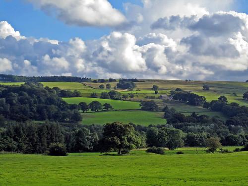 Bardon Mill landscapes