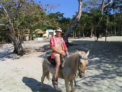 Roatan horse ride