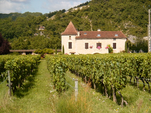 Cahors Wine Chateaux
