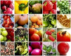 Mosaic Fruit and Veg