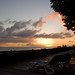 Small photo of Final Allamanda Sunset