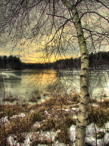 winter sunset lake frozen shelton birch hdr