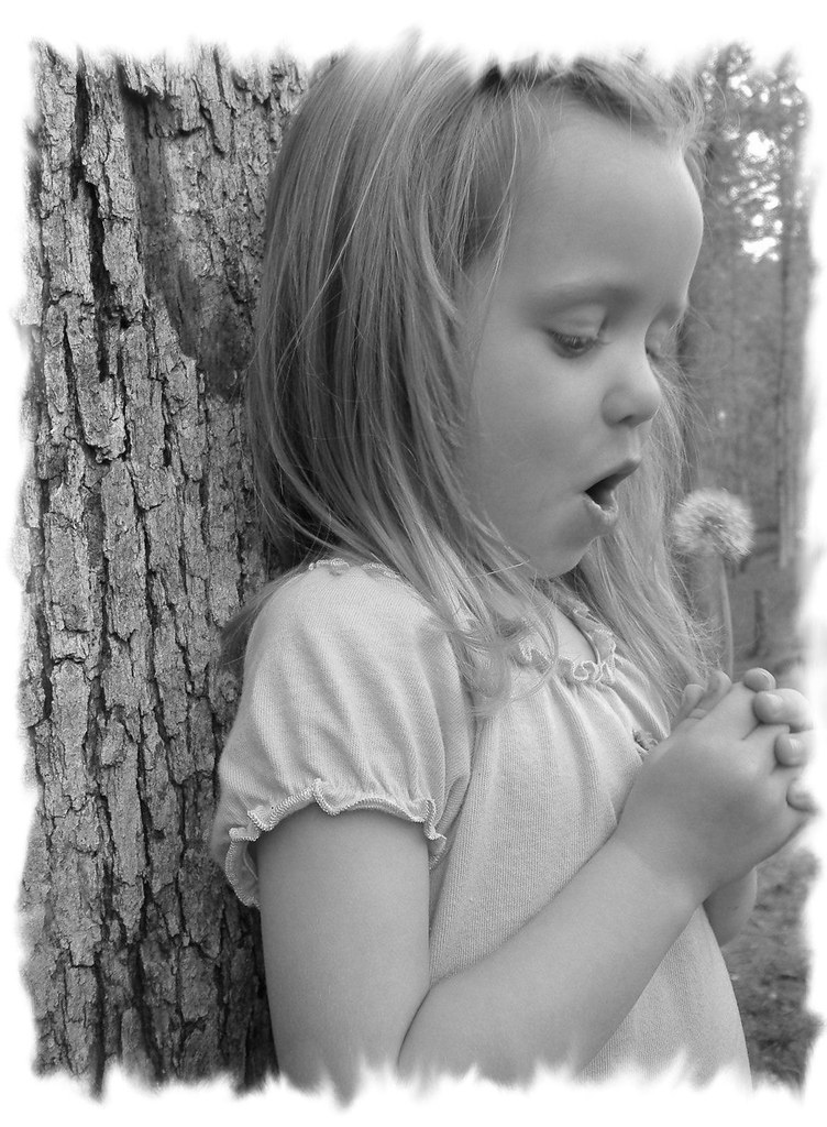 2cac29515 Fun with a Dandelion | Jenna and Hailey | Flickr